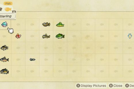 Animal Crossing New Horizons Fish Catching Guide