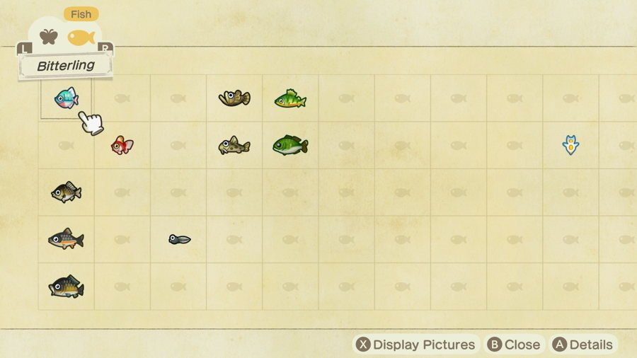Animal Crossing New Horizons Fish Catching Guide