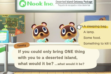 What To Bring To Deserted Island In Animal Crossing New Horizons