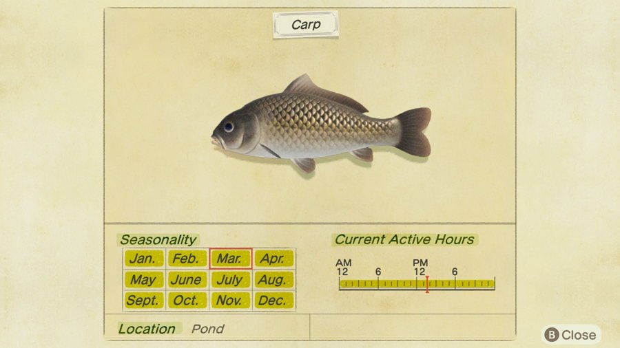 Carp Animal Crossing New Horizons