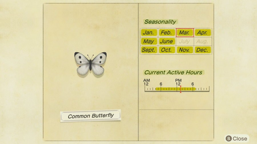 Common Butterfly Location Animal Crossing New Horizons