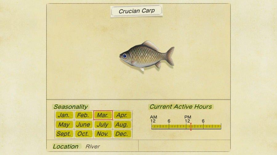 Crucian Carp Animal Crossing New Horizons