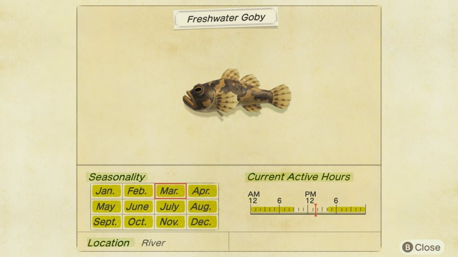 Freshwater Goby Animal Crossing New Horizons