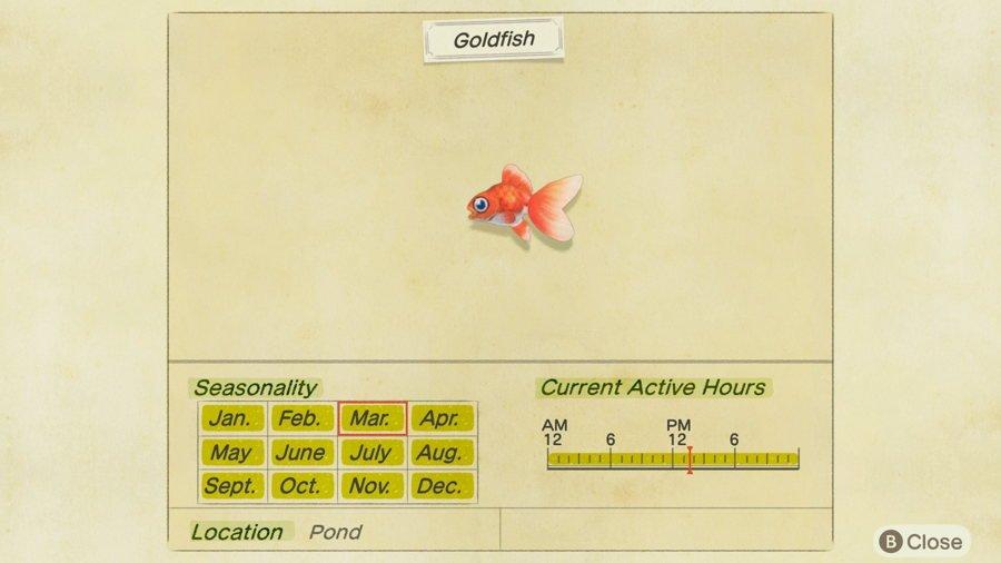 Goldfish Animal Crossing New Horizons