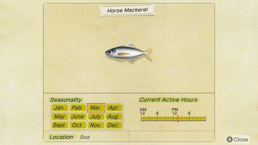 Horse Mackerel Animal Crossing New Horizons