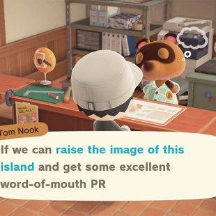 How To Raise Image Of The Island In Animal Crossing New Horizons