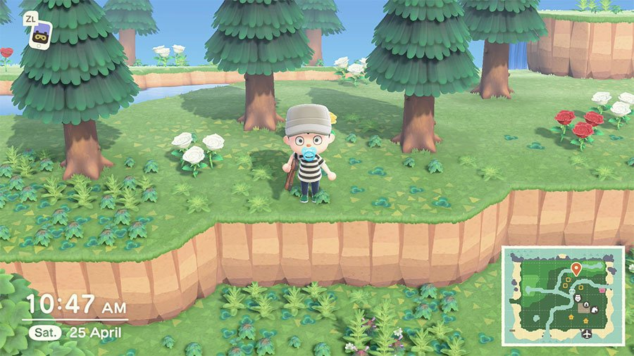 How To Unlock A Ladder In Animal Crossing