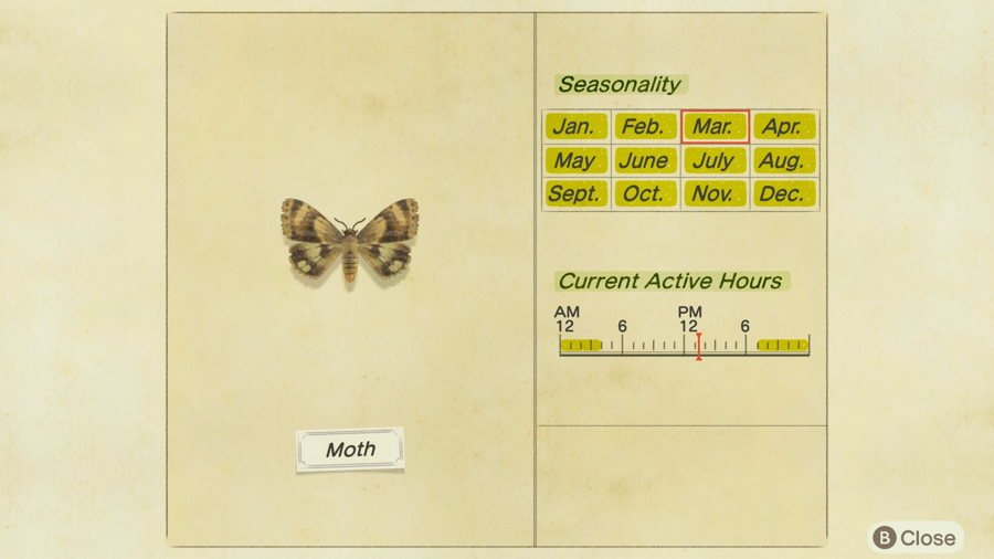 Moth location Animal Crossing New Horizons