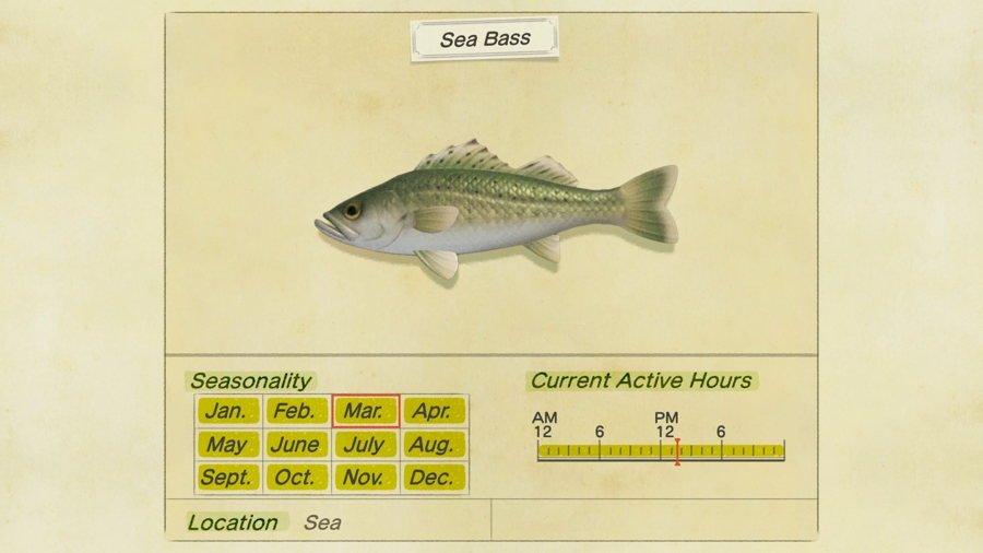 Sea Bass Animal Crossing New Horizons
