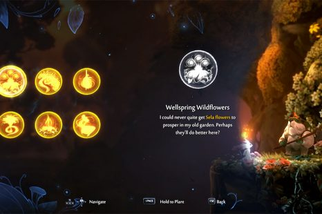 What To Do With Mysterious Seed In Ori And The Will Of The Wisps