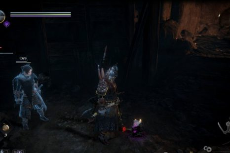 What To Give The Purple Kodama In Nioh 2