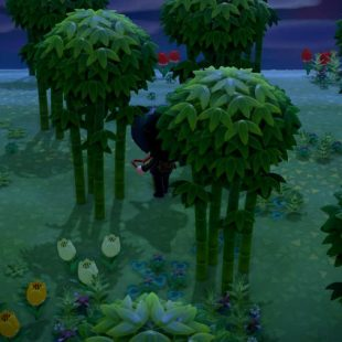 Where To Get Bamboo In Animal Crossing New Horizons