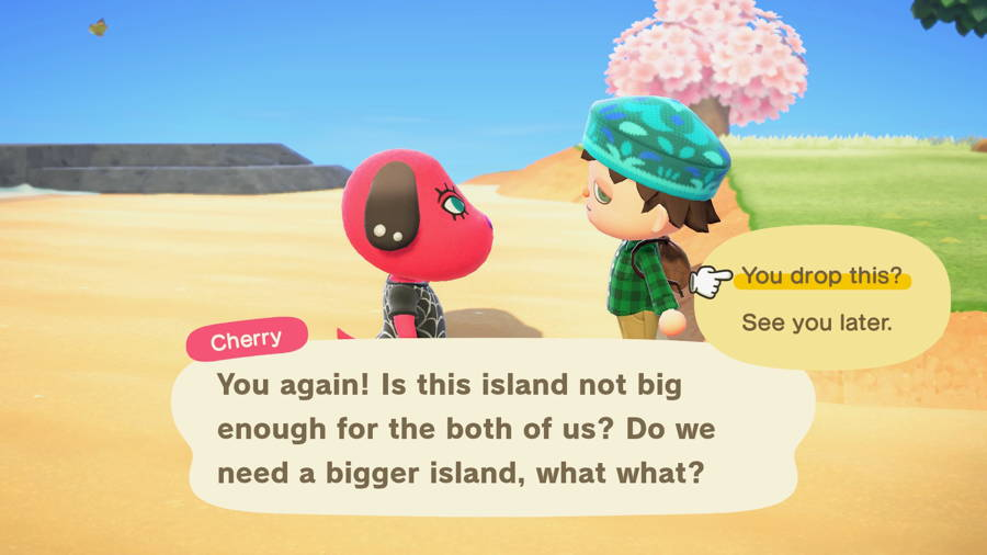 Where To Turn In Lost Items In Animal Crossing New Horizons 2