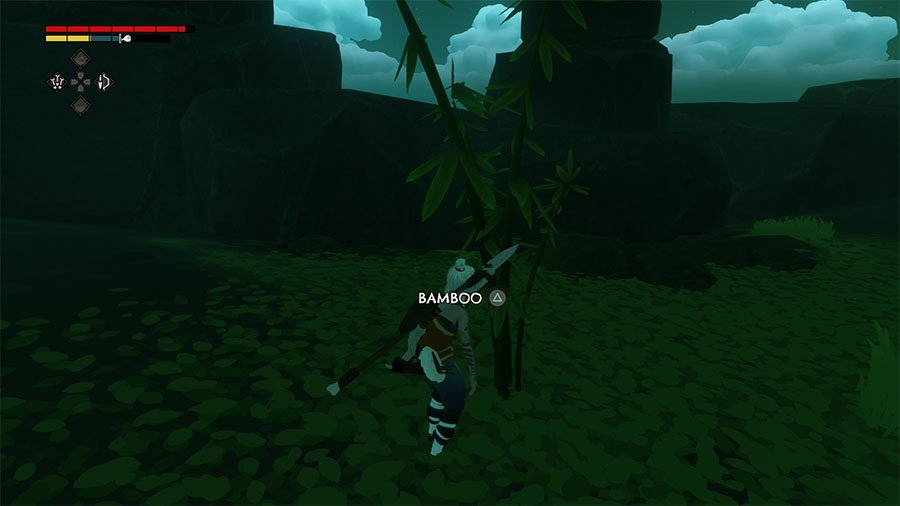 Where To Find Bamboo