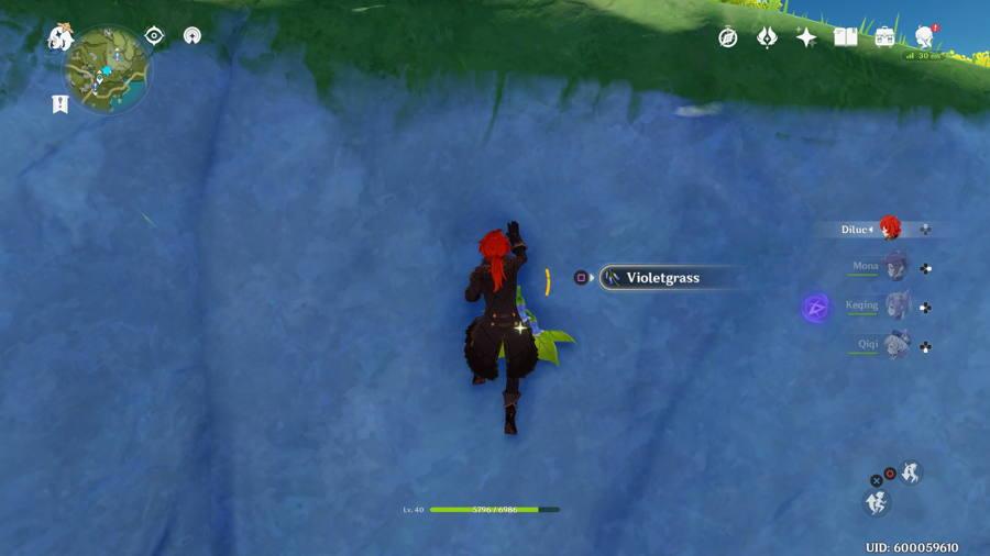 Genshin Impact Violetgrass Location