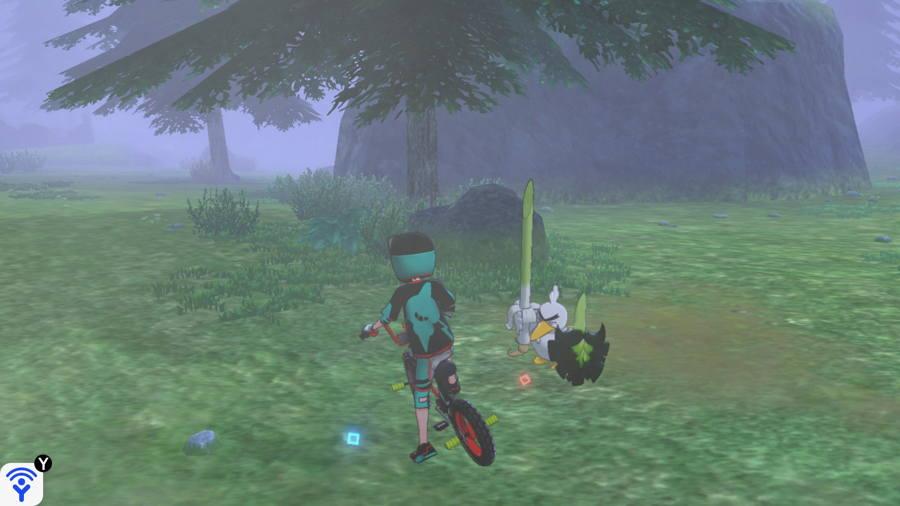Grassland Pokemon Evidence Locations 3