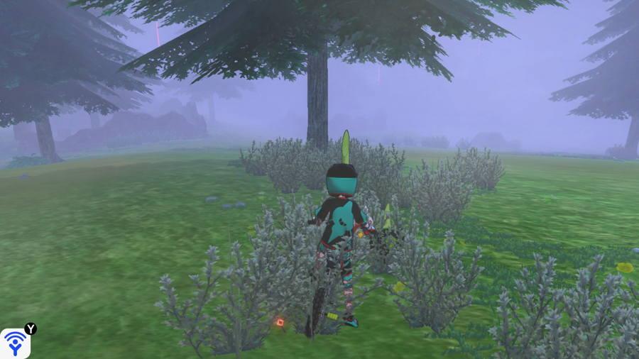 Grassland Pokemon Evidence Locations 4