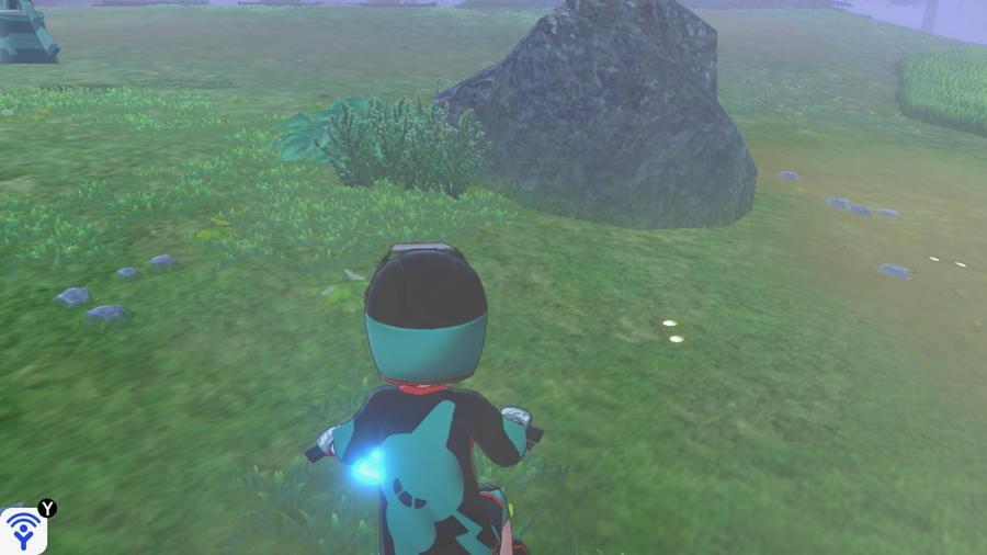 Grassland Pokemon Evidence Locations 5