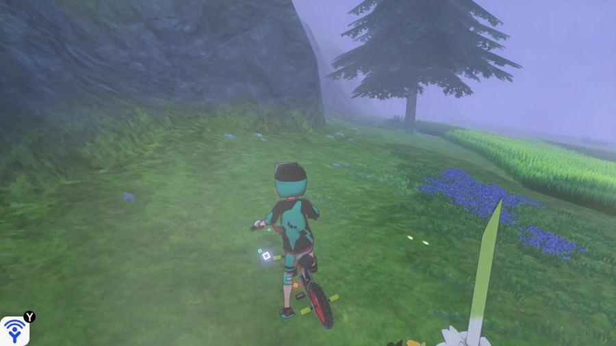 Grassland Pokemon Evidence Locations 6