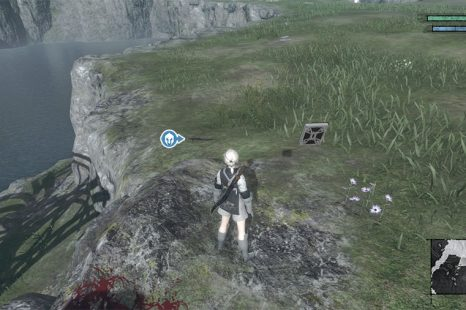 Where To Find Mouse Tails & Lizard Tails In NieR Replicant Ver1.22