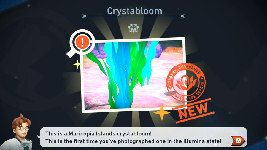 Where To Find The Maricopia Islands Crystabloom In New Pokemon Snap