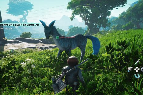 Where To Find Koko Pips & Other Pips In Biomutant