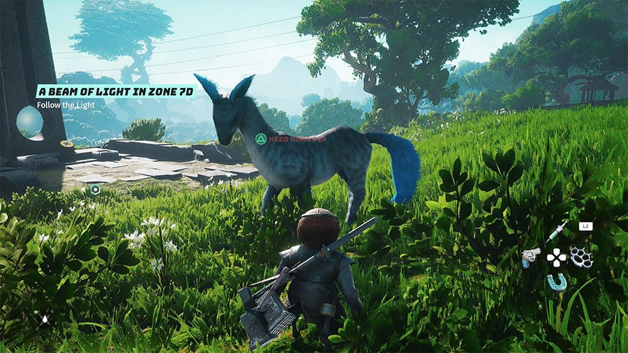 Where To Find Koko Pips In Biomutant