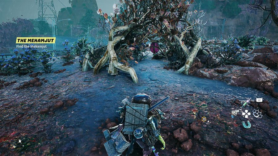 Where To Find Pine Pips In Biomutant