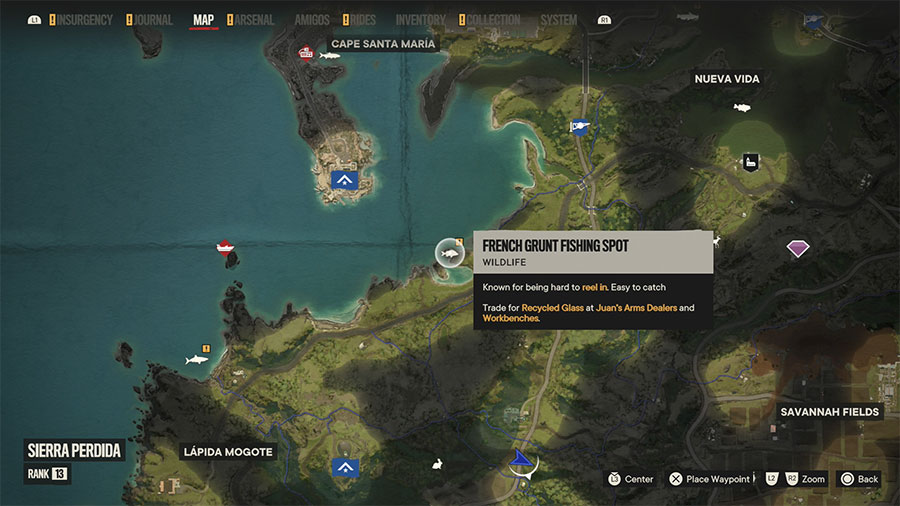 Where To Catch French Grunt (Easy)